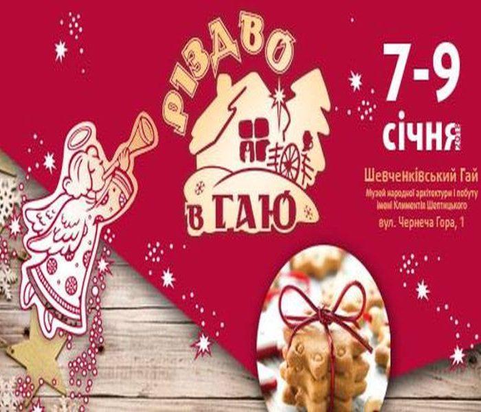 Різдво у Гаю